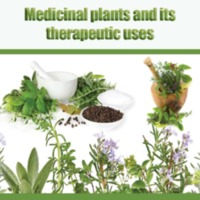 Medicinal Plants and Its Therapeutic Uses.pdf